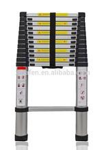 Best adjustable step ladders
