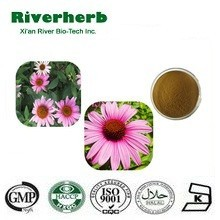 GMP Manufacture Echinacea Angustifolia Extract