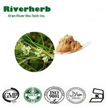 Chinese Dodder Seed Extract Semen Cuscutae Extract