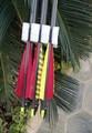 Pur tir à l'arc flèches de carbone avec rayée / rayé la turquie empennes