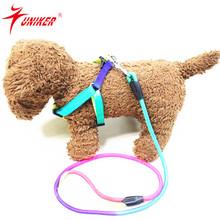 Wholesale Pet Teddy Rainbow Nylon Collar dog leash