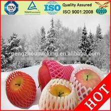 China Vendor direct supply Free Samples Apple/Mango/papaya Fruit Protection Net