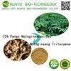 75% Panax Notoginsenosides Notoginseng Triterpenes