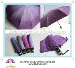 Customized OEM umbrella, 10 ribs foldable umbrella automatic open