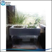 PS-001 Special customize plant and fish Mini Aquaponics aquarium