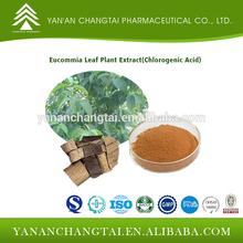 Eucommia Leaf Plant Extract(Chlorogenic Acid10%,25%,30%,98%)