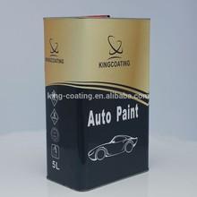 Auto Refinishing Paint 1K coating primer for plastic,pp,pe pa