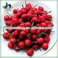 famosos frutas em conserva tomate cereja fresca