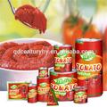 Barato en lata aplastado tomates cherry secos aséptica salad cream sauce bottle ketchup estaño tomate