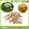 Since 1998/Angelica sinensis Extract/1%Ligustilide , 0.1% Ferulic acid