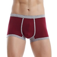 Adult Age Group And Sexy Boy Teen Underwear Low Waist Transparent Boxer Man