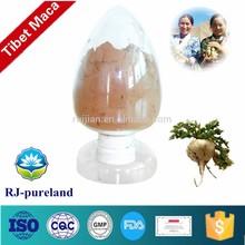 Tibet organic maca root extract
