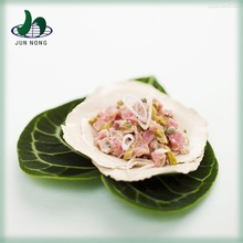 Wholesale high quality canned importers tuna thailand