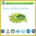 BV 인증 제조업체 공급 최적의 가격 핫 판매 방지- 암 콩 robusta 녹색 커피 콩 추출물