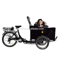 New design van cargo tricycle