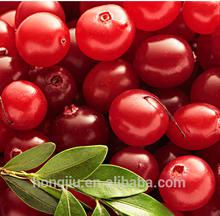 Wholesale Cranberry Powder Extract