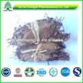 gmp fonte da fábrica bv certificada melhor venda de folhas de espinheiro