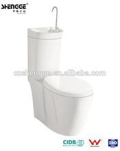 dual-flush two piece toilet design
