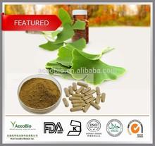GMP standard Ginkgo Biloba Extract, Ginkgo biloba extract powder,Ginkgo Biloba leaf Extract 24/6 32/0 /CAS 90045-36-6