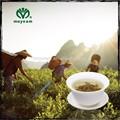 Moyeam GMP certificado orgánico té de hierbas cuidado de la salud
