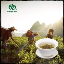 Moyeam GMP certificated organic tea health care herbs