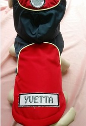 100% Polyester Red outdoor windproof coat dog coats