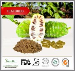 Top quality Pure Noni fruit extract powder, Noni price, Morinda Citrifolia extract 4:1 10:1 20:1