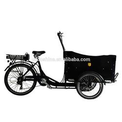 Best popular electric bike for cargo