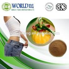 Loss weight 60% Hydroxycitric Acid/Pure Hydroxycitric Acid powder Garcinia Cambogia extract