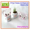 Grass head toy grass growing head toy grass hair doll grass toy