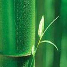 100% Natural Bamboo extract