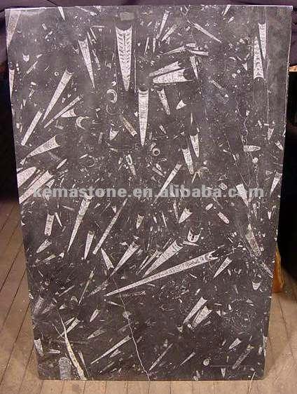 fossil stein k chenarbeitsplatten lowes tischplatte. Black Bedroom Furniture Sets. Home Design Ideas
