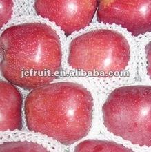 Apple fruit market