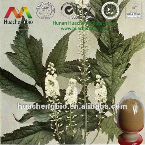 ISO&Kosher 2.5%-5% Triterpene Glycosides Cimicifuga Racemosa P.E.