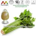 ISO&Kosher Natrual Apigenin Celery Extract