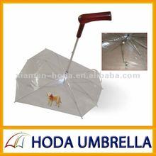 transparent pet's umbrella