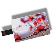 bulk 1GB 2GB 4GB business card usb flash drive usb 3.0