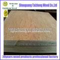 Bintangor sécuritéf/b grade de meubles en contreplaqué commercial