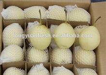 China fresh Ya pear