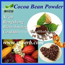 Hot Sale Natural Cocoa Bean Powder