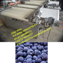 Small berrys blueberry sorting machine/fruit sorting machine