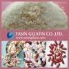 High-Quality Pharmaceutical Grade Gelatin