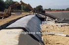 4000g-6000g bentonite geotextile clay liner with competitive price