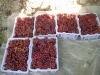 Chinese fruit fresh red globe table grapes