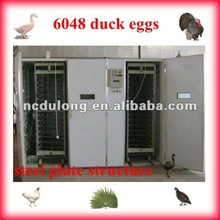2012 good quality best selling large egg incubator price cheap capacity 6048 duck eggs