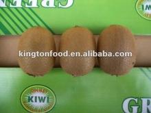 hayward kiwi fruit