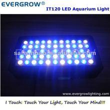 NEW 2012 AQUARIUM 165W LED LIGHT 55PCS 3W LEDs For Fish Tank Coral Reef