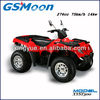 300cc eec china sand beach buggy with water cooled 4 stroke engine