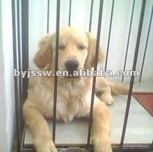 pet cage dog carrier