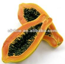 Papaya Seed Extract Papaya P.E. Powder 10:1